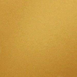 Gold Color Swatch Paint